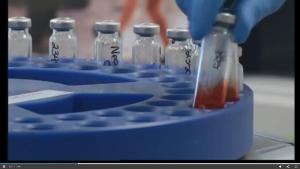 DUI Blood Test Vials